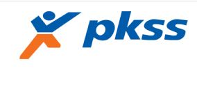 Lowongan Kerja Bank BUMN Medan 2020 sebagai IT di PKSS