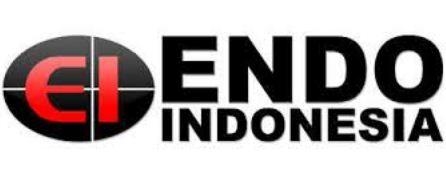 Lowongan Kerja PT Endo Indonesia Medan Tamatan Diploma 2020 Hari ini