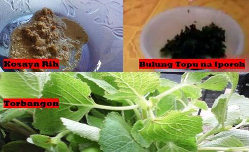 Obat Herbal Tradisional Batak Simalungun Yang wajib Anda Tahu