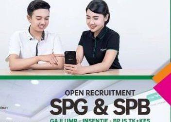 Contoh Surat Lamaran Kerja SPG Handphone Yang Benar dan Tepat