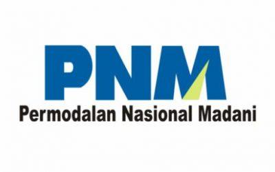Contoh Surat Lamaran Kerja PT Permodalan Nasional Madani Atau PNM
